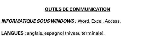 cv   regrouper les langues et l u2019informatique dans une
