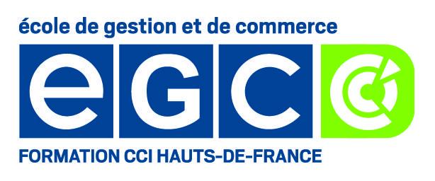 EGC LILLE - ECOLE DE GESTION ET DE COMMERCE / BAC+3 BAC+5