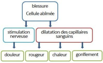 plan q rapide Saint-Herblain