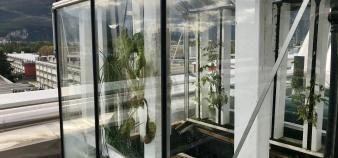 Sur le toit de Grenoble INP-Ense3, les étudiants ont conçu un projet innovant de serre connectée. //©Amélie Petitdemange