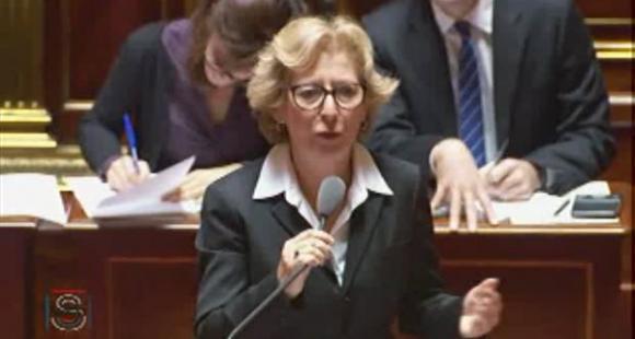 Geneviève Fioraso - Sénat - Octobre 2013