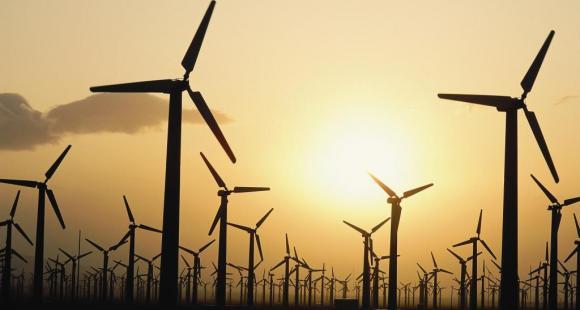 Semaine du développement durable : où en sont les établissements ?