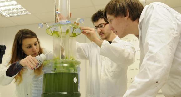 Les étudiants de l'Institut Villebon-Charpak mènent durant leurs trois années de formation plusieurs projets de groupe.