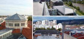 À Lyon, Nantes et Saint-Étienne, d'anciens terrains laissés à l'abandon sont réinvestis par les collectivités. //©REA