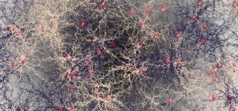 Isabelle Le Brun, maître de conférences en neurosciences à l'université Grenoble Alpes, mène un projet de recherche-action autour de la méthodologie. //©plainpicture/Cultura/Callista Images