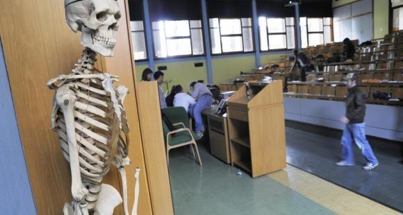 Études de médecine : le Sénat vote une mesure controversée pour lutter contre les déserts médicaux