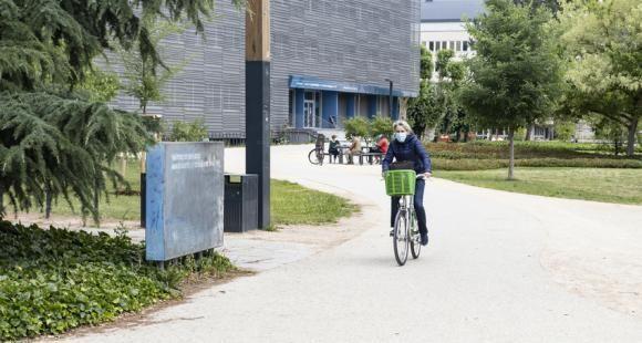 Université de Strasbourg : remous après une vague de démissions aux conseils centraux