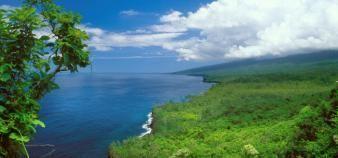 Une mission de préfiguration d'une université de l'océan Indien est en cours. //©Kurt HENSELER/LAIF-REA