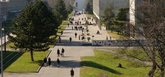 De nouvelles élections seront organisées pour pourvoir les quatre sièges des personnels administratifs et techniques à nouveau vacants. //©Université de Lyon