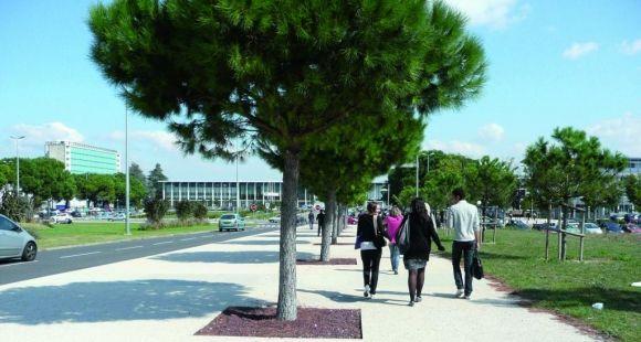 Université Toulouse 3 Paul Sabatier