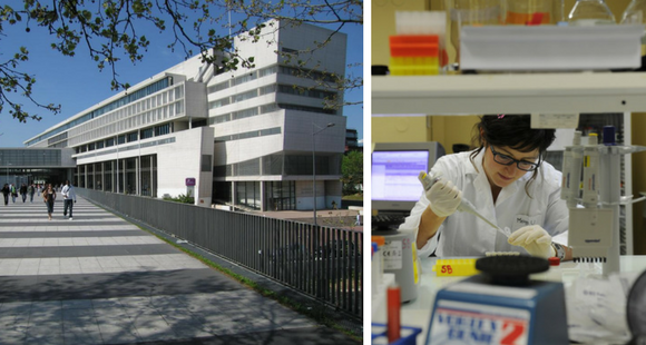 """Écoles universitaires de recherche : des """"graduate schools"""" à la française"""