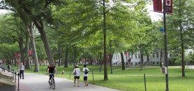 Le campus de Harvard © E.Vaillant 2012Le campus de Harvard //©Emmanuel Vaillant