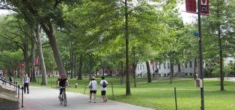 Le campus de Harvard //©Emmanuel Vaillant