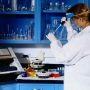 Laboratoire de recherche //©LR