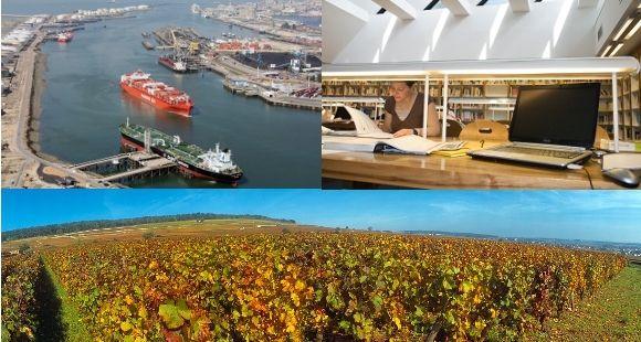 Logistique à l'EM Normandie (© Le Havre port), e-business à Grenoble EM (© Agence Prisme - Pierre Jayet), management du vin à l'ESC Dijon.