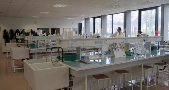 Universite - Rennes 1 - laboratoire - ©V.Bertereau
