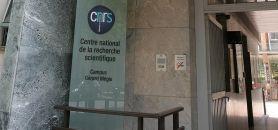 Le CNRS rassemble un cinquième des chercheurs hexagonaux, estime Claudio Galderisi. //©Nicole TIGET/CNRS Photothèque