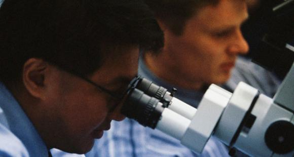 Enseignants-chercheurs : des revalorisations pour les jeunes et les meilleurs