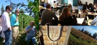 Etudiants du Wine MBA de Kedge Bordeaux à Pressac © Kedge BS ; étudiants de M2 du Bordeaux international wine institute de l'Inseec © Inseec ; vignes de l'ESC Dijon © ESC Dijon Bourgogne.
