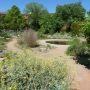 Le jardin botanique Henri Gaussen © Université Toulouse 3 - Paul Sabatier