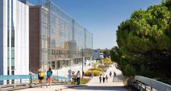 Comment l'Idex transforme les établissements lauréats ?
