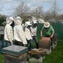 L'Ecole des mines de Nantes produit son miel depuis 2011 //©Ecole des mines de Nantes