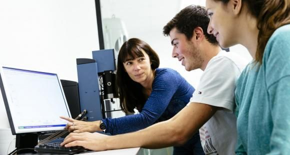 Cinq écoles d'ingénieurs se lancent dans l'apprentissage en deux ans