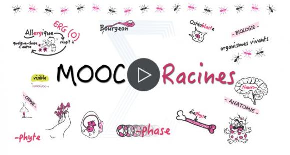 """Le Mooc """"Racines"""" propose aux futurs étudiants en médecine de décortiquer le sens du vocabulaire utilisé en Paces."""