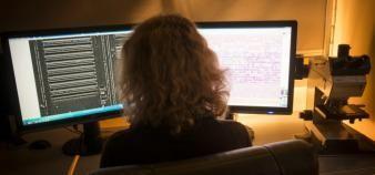 Alors que le secteur de la cybersécurité peine à recruter, il mise sur l'embauche de femmes. //©Jean-Claude Moschetti/REA
