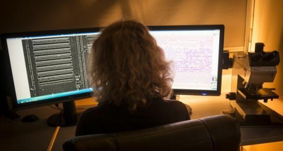 La cybersécurité courtise les femmes pour recruter les profils qui lui manquent