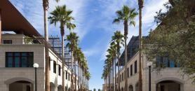 L'université de Stanford s'est établie comme le centre névralgique de l'économie de l'information et du numérique. //©Hélène Stanford