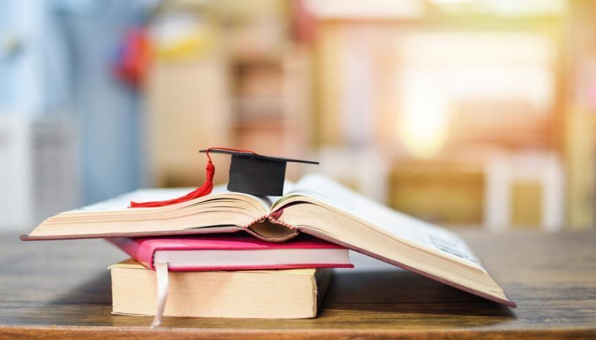Les bi-cursus permettent aux étudiants de suivre les cours de deux licences. //©Adobe Stock /Engdao