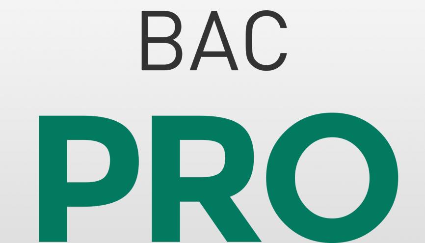 Bac Pro //©letudiant.fr