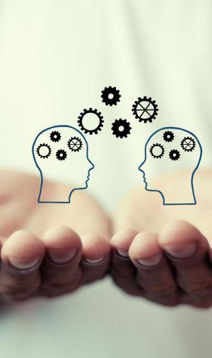Tout savoir sur la licence de psychologie, l'une des plus populaires à l'université.