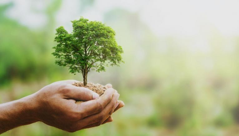Les dirigeants du supérieur lancent un appel pour intégrer les enjeux du climat dans les entreprises.