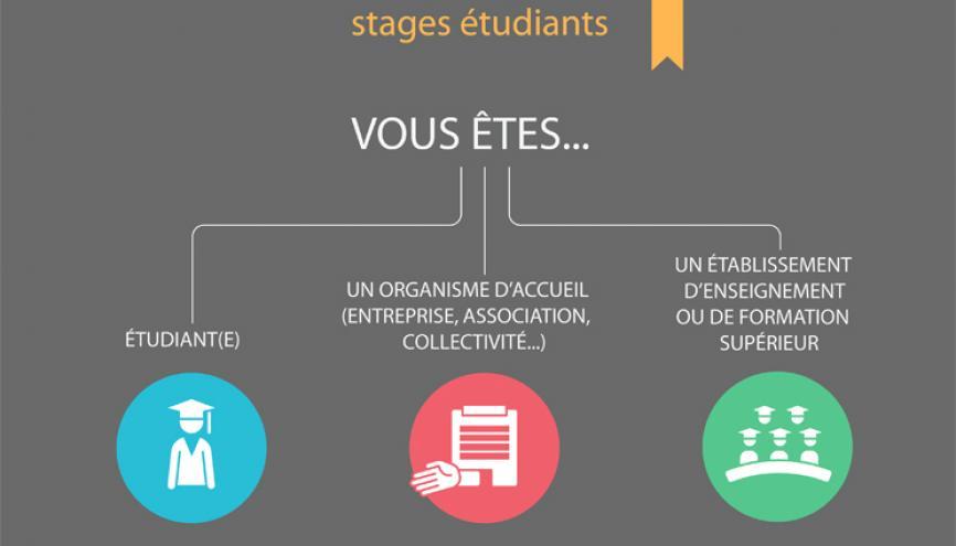 Page d'accueil du Guide pratique des stages étudiants sur le site du ministère de l'enseignement supérieur //©MESR