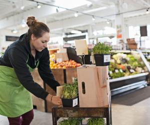 Les supermarchés proposent souvent des contrats de travail adaptés aux étudiants.