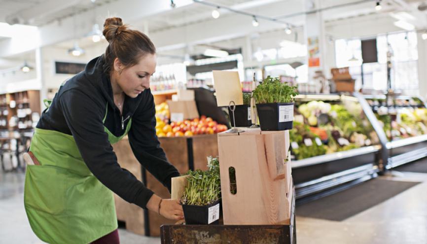 Les supermarchés proposent souvent des contrats de travail adaptés aux étudiants. //©PlainPicture