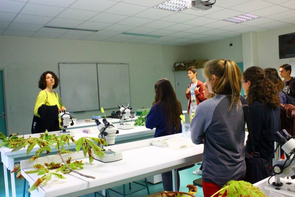 Les élèves visitent leur lycée. Ici, la salle de TP où les microscopes attendent sur les paillasses les étudiants. //©Delphine Dauvergne