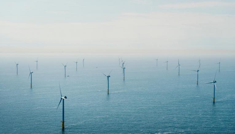 Le secteur de l'éolien a créé 2.600 emplois en France en 2018. Les projets de parcs éoliens en mer se multiplient comme à Fécamp, Saint-Brieuc ou Saint-Nazaire.