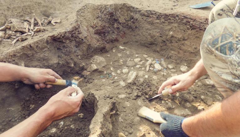 """L'expression """"mettre au jour"""" est utilisée en archéologie, où l'on met au jour des vestiges du passé."""
