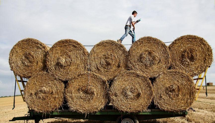 Les ouvriers agricoles et les chefs d'exploitation dans  la production animale sont particulièrement recherchés dans certaines régions. //©Pablo Chignard/Hans Lucas