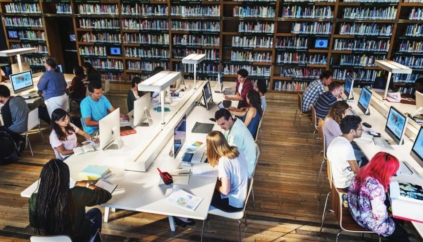 Moins d'un tiers des étudiants obtiennent leur licence en trois ans avec de fortes disparités selon les profils. //©Rawpixel.com/AdobeStock