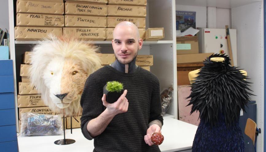 Lion, robe, mousse et champignon... Maxime Leroy peut créer tout un monde avec ses plumes. //©Delphine Dauvergne