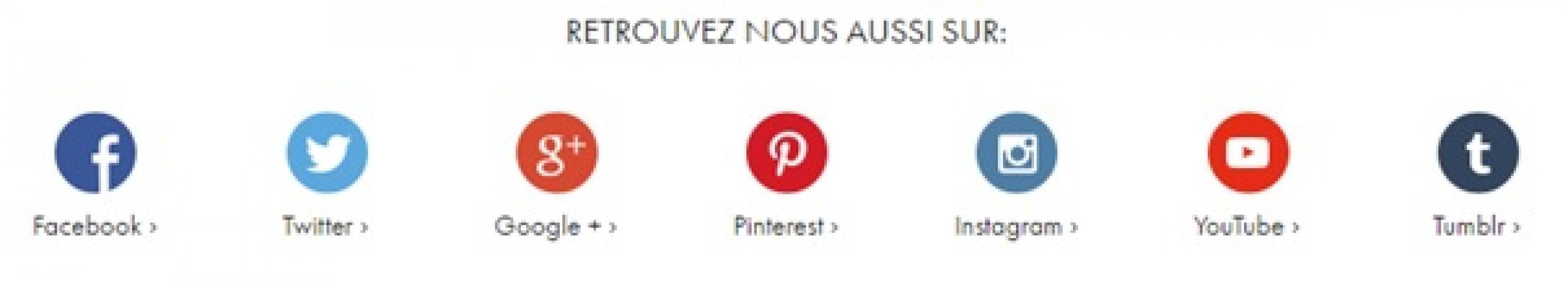 logo instagram pour cv