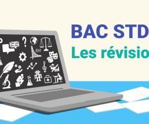 Bac STD2A - Les révisions