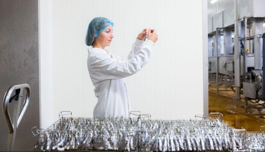 De manière générale,  ce sont les entreprises dont les process sont automatisés qui ont leplus recours à l'alternance.  Ici, la conserverie Gonidec, à Concarneau (29). //©Thomas Louapre/Divergence pour l'Etudiant