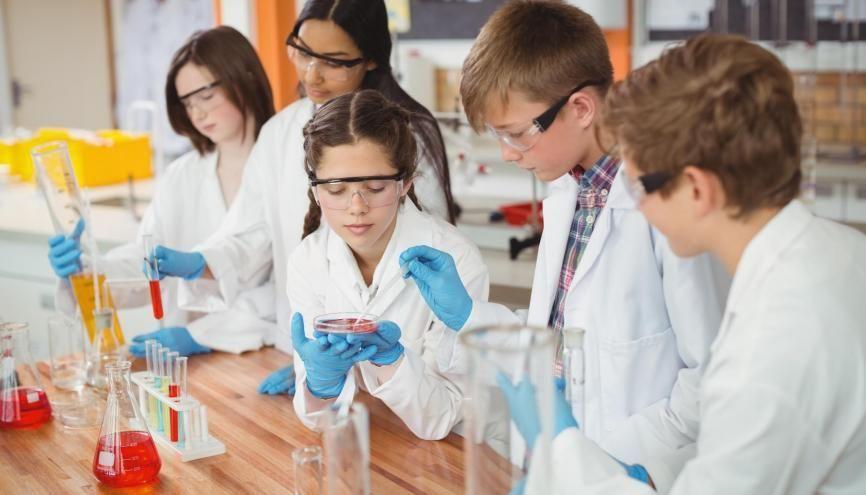 À la fin de l'école primaire, deux élèves de CM2 sur trois présentent un niveau correct en sciences. //©Adobe Stock/WavebreakMediaMicro