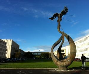L'université de Caen propose une licence professionnelle webmestre conjointement avec l'école régionale des beaux-arts.