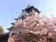 Le château d'Osaka //©M.